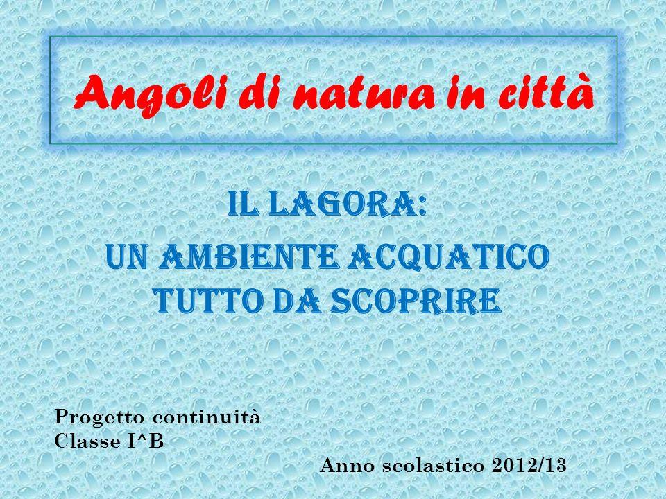 Angoli di natura in città Il Lagora: un ambiente acquatico tutto da scoprire Progetto continuità Classe I^B Anno scolastico 2012/13