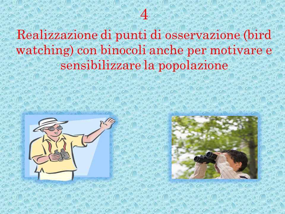 Realizzazione di punti di osservazione (bird watching) con binocoli anche per motivare e sensibilizzare la popolazione 4
