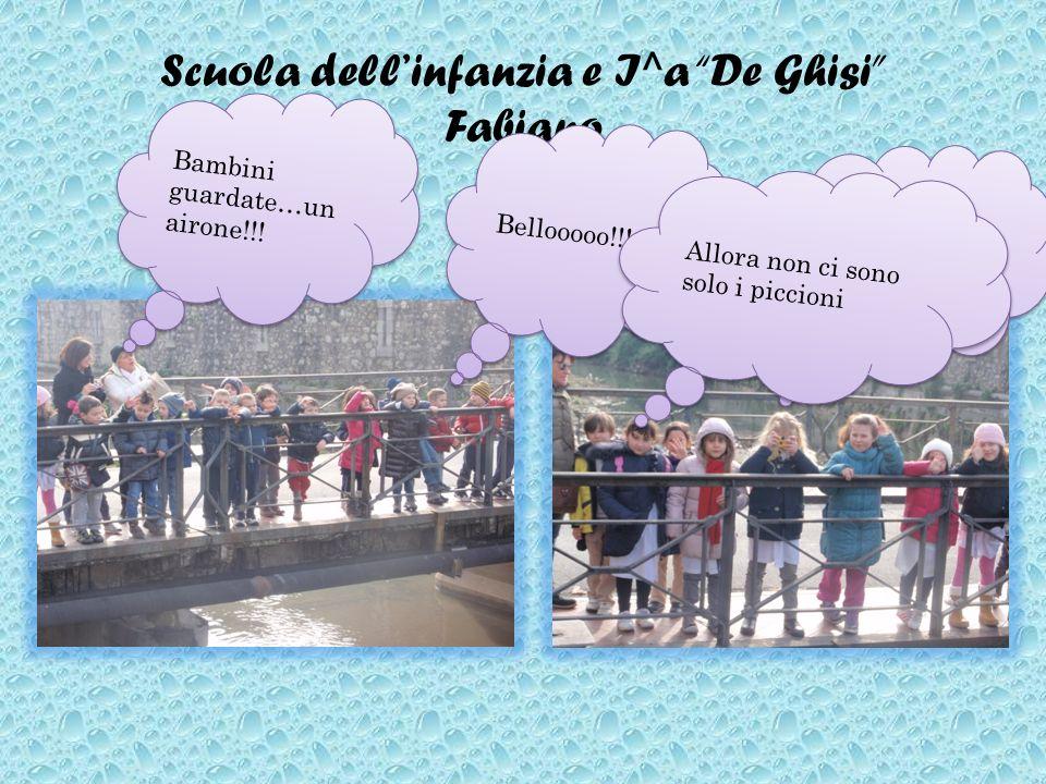 Scuola dellinfanzia e I^a De Ghisi Fabiano Ed io faccio una bella foto Bambini guardate…un airone!!! Bellooooo!!! Allora non ci sono solo i piccioni