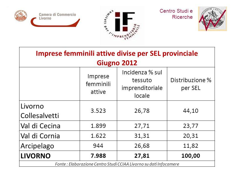 Centro Studi e Ricerche Comitato per lImprenditoria Femminile Imprese femminili attive divise per SEL provinciale Giugno 2012 Imprese femminili attive Incidenza % sul tessuto imprenditoriale locale Distribuzione % per SEL Livorno Collesalvetti 3.52326,7844,10 Val di Cecina 1.89927,7123,77 Val di Cornia 1.62231,3120,31 Arcipelago 94426,6811,82 LIVORNO 7.98827,81100,00 Fonte : Elaborazione Centro Studi CCIAA Livorno su dati Infocamere