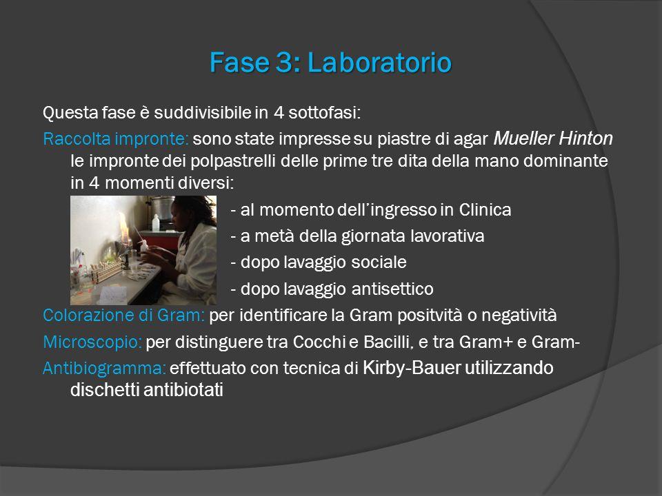 Fase 3: Laboratorio Questa fase è suddivisibile in 4 sottofasi: Raccolta impronte: sono state impresse su piastre di agar Mueller Hinton le impronte d