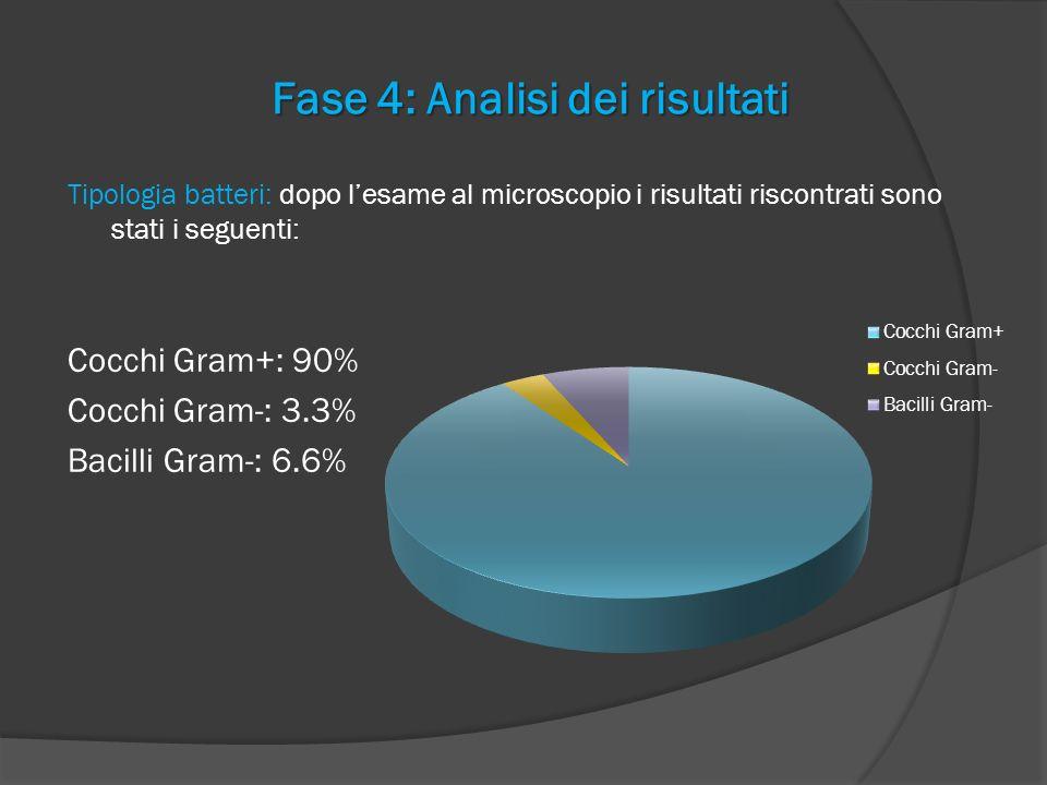 Fase 4: Analisi dei risultati Tipologia batteri: dopo lesame al microscopio i risultati riscontrati sono stati i seguenti: Cocchi Gram+: 90% Cocchi Gr