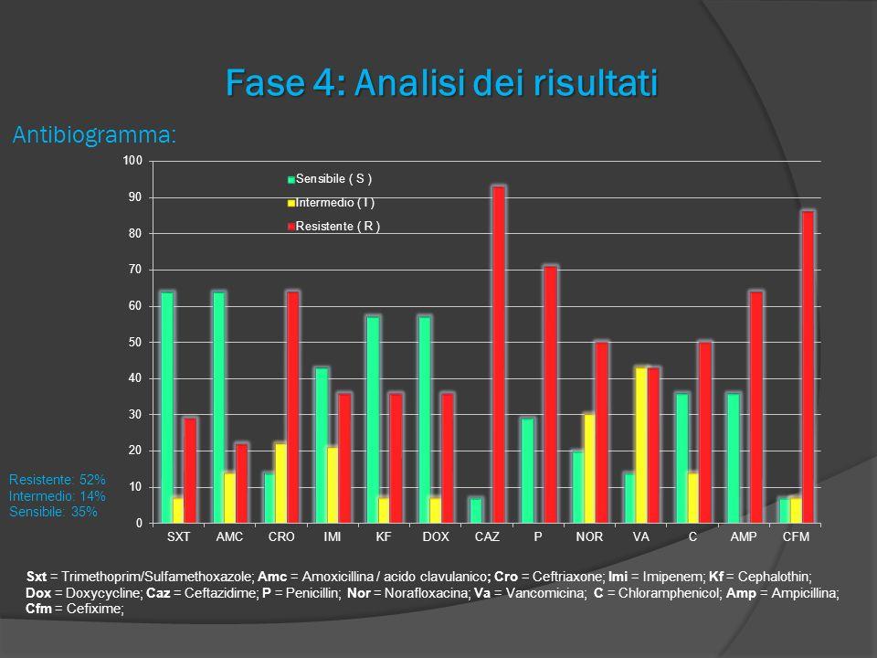 Fase 4: Analisi dei risultati Antibiogramma: Sxt = Trimethoprim/Sulfamethoxazole; Amc = Amoxicillina / acido clavulanico; Cro = Ceftriaxone; Imi = Imi
