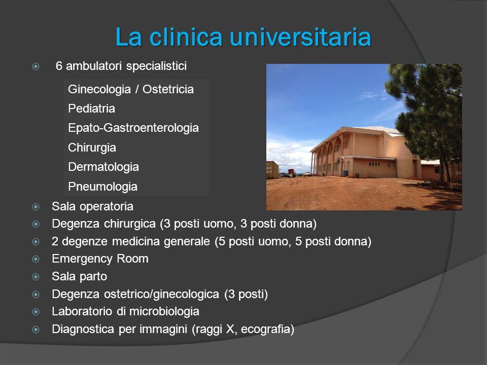 La clinica universitaria 7 Medici di ruolo + 2 ausiliari 1 Odontoiatra 6 Infermieri 4 Farmacisti 3 Tecnici di laboratorio 1 Microbiologo 1 Tecnico radiologo 10 – 15 studenti delle varie discipline