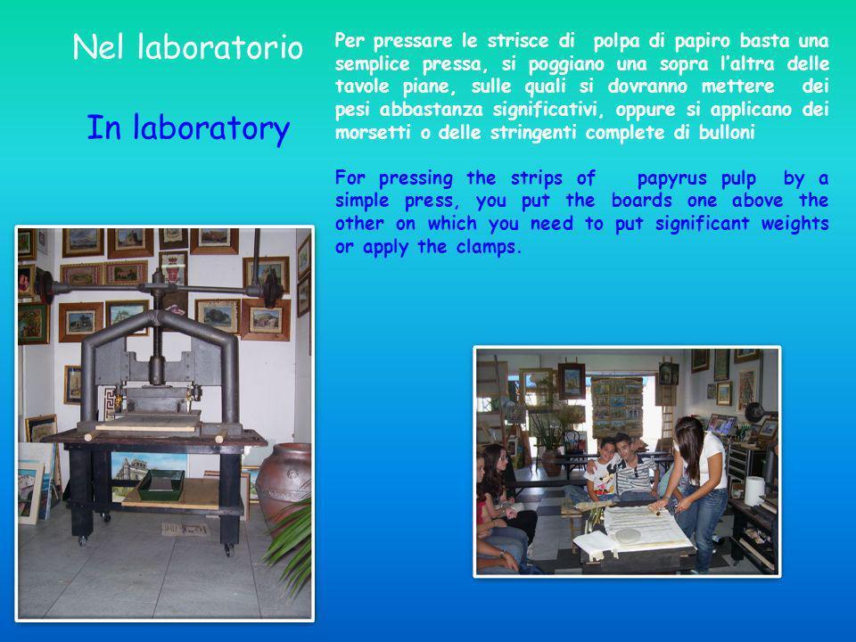 Nel laboratorio In laboratory Per pressare le strisce di polpa di papiro basta una semplice pressa, si poggiano una sopra laltra delle tavole piane, s