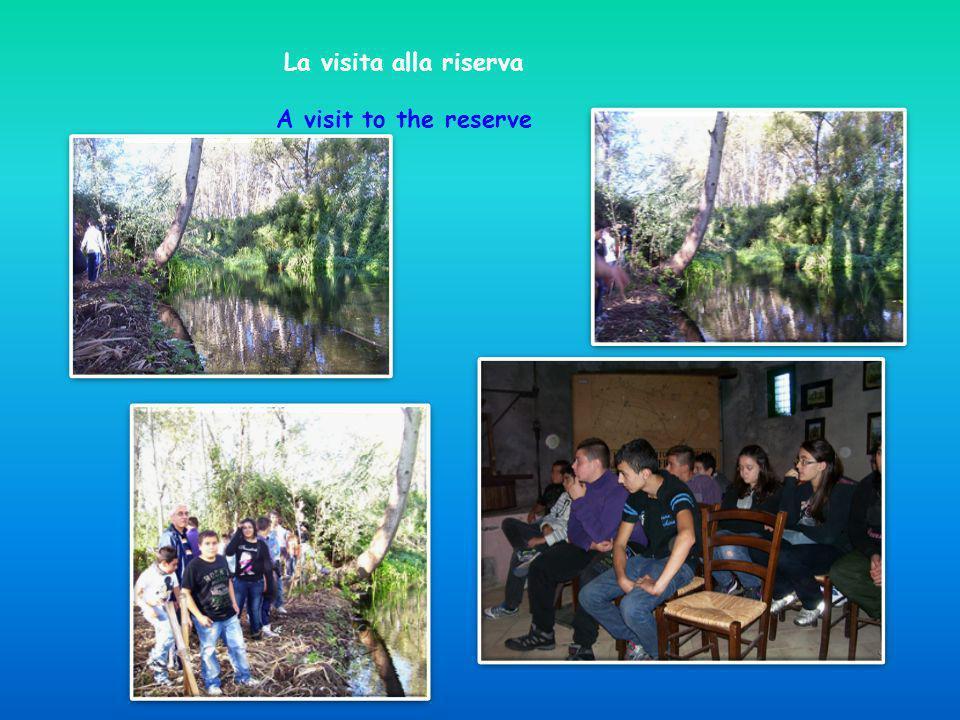 La visita alla riserva A visit to the reserve