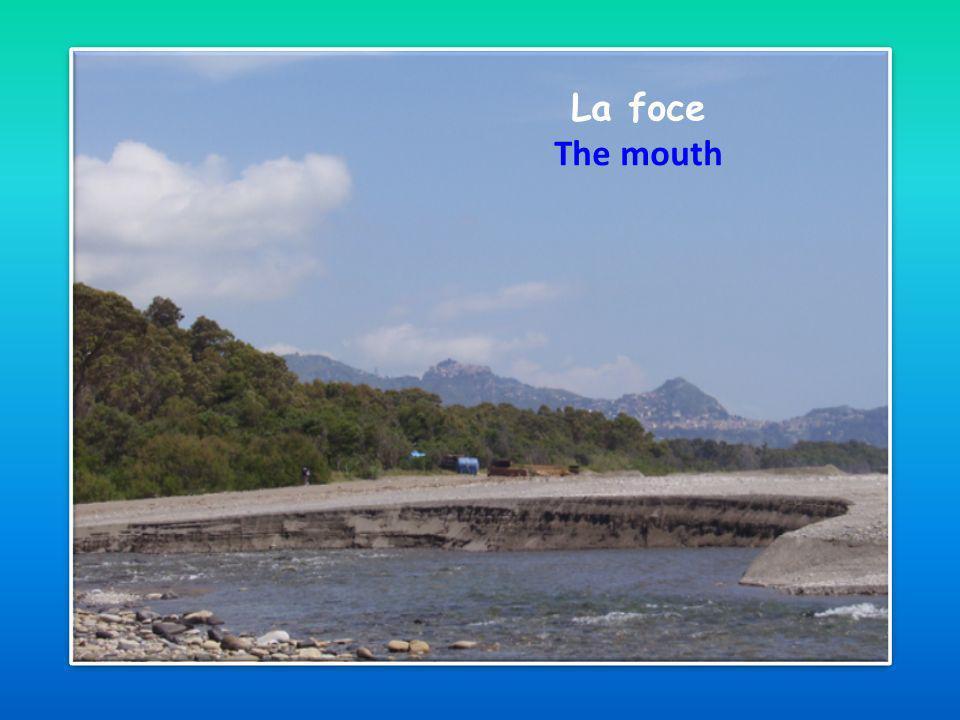 La foce The mouth