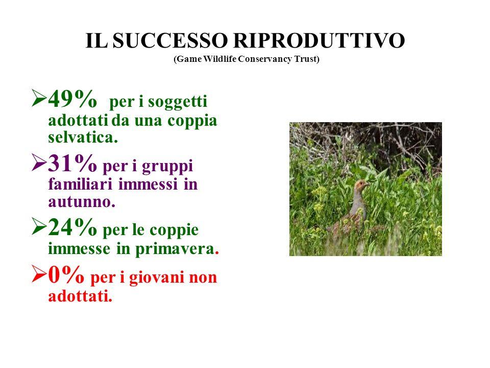 IL SUCCESSO RIPRODUTTIVO (Game Wildlife Conservancy Trust) 49% per i soggetti adottati da una coppia selvatica. 31% per i gruppi familiari immessi in