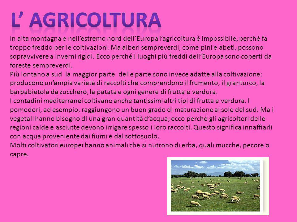 In alta montagna e nellestremo nord dellEuropa lagricoltura è impossibile, perché fa troppo freddo per le coltivazioni.