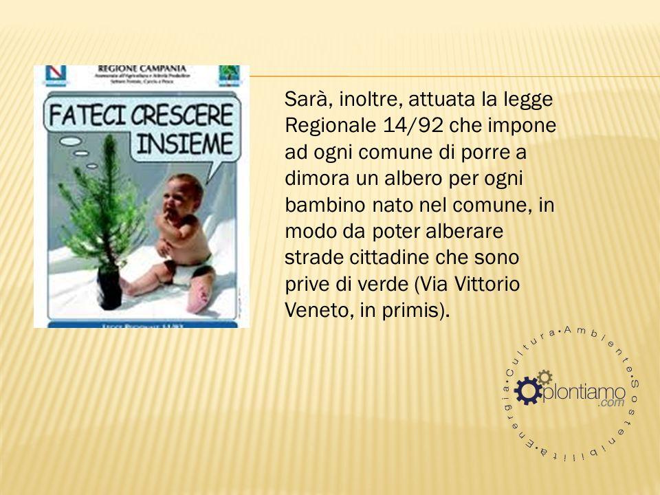 Sarà, inoltre, attuata la legge Regionale 14/92 che impone ad ogni comune di porre a dimora un albero per ogni bambino nato nel comune, in modo da poter alberare strade cittadine che sono prive di verde (Via Vittorio Veneto, in primis).