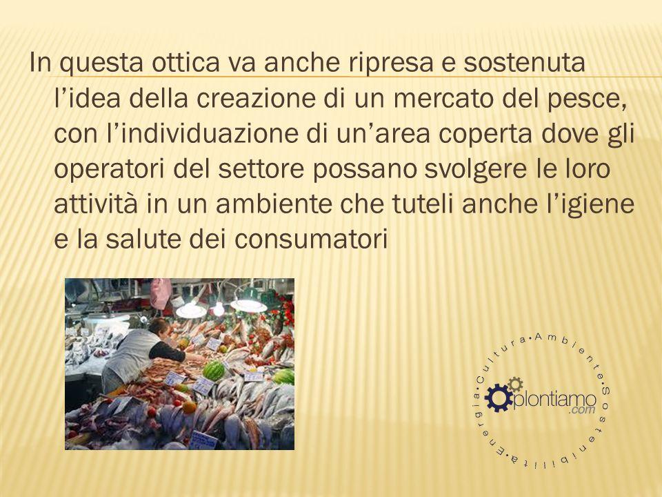 In questa ottica va anche ripresa e sostenuta lidea della creazione di un mercato del pesce, con lindividuazione di unarea coperta dove gli operatori del settore possano svolgere le loro attività in un ambiente che tuteli anche ligiene e la salute dei consumatori