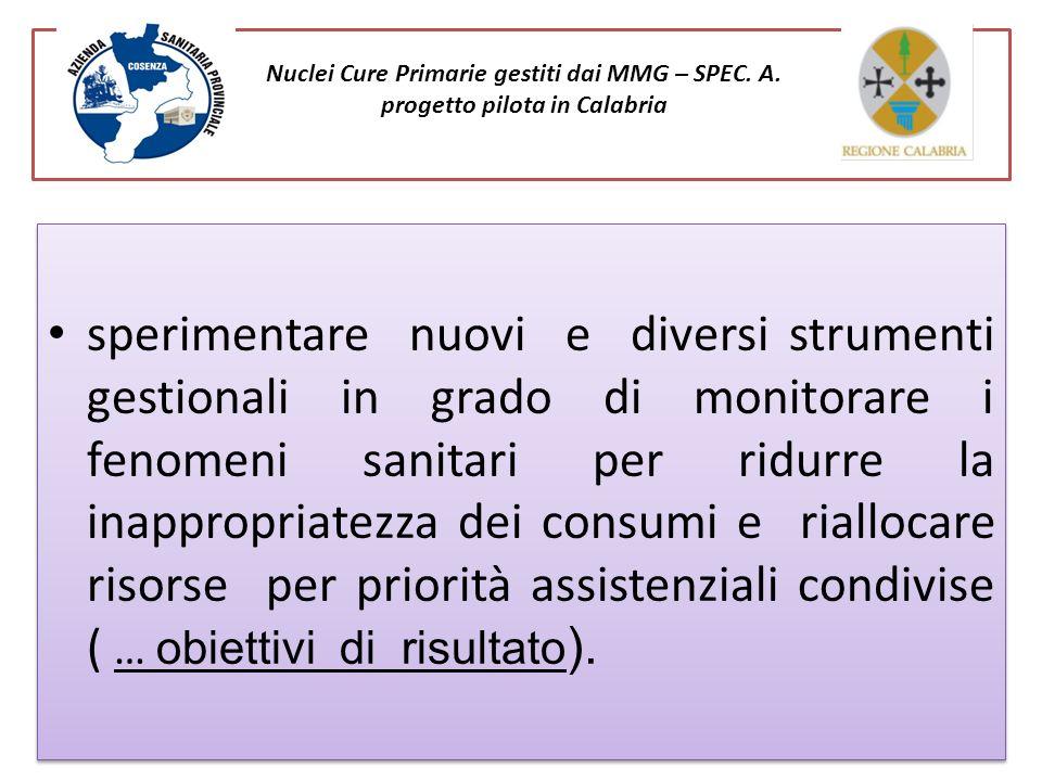 Nuclei Cure Primarie gestiti dai MMG – SPEC. A. progetto pilota in Calabria sperimentare nuovi e diversi strumenti gestionali in grado di monitorare i