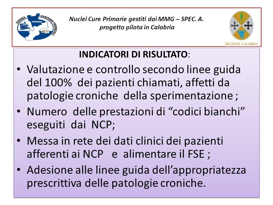 Il Distretto e I Nuclei delle Cure Primarie: progetto pilota in Calabria Relatore : Antonio Perri INDICATORI DI RISULTATO: Valutazione e controllo sec