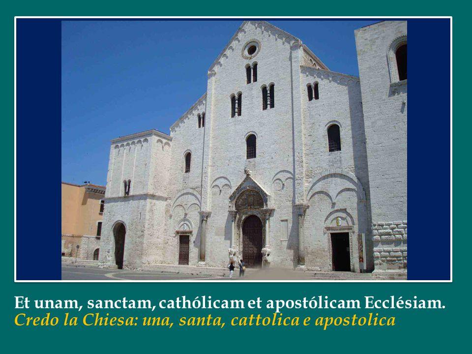 Et unam, sanctam, cathólicam et apostólicam Ecclésiam.