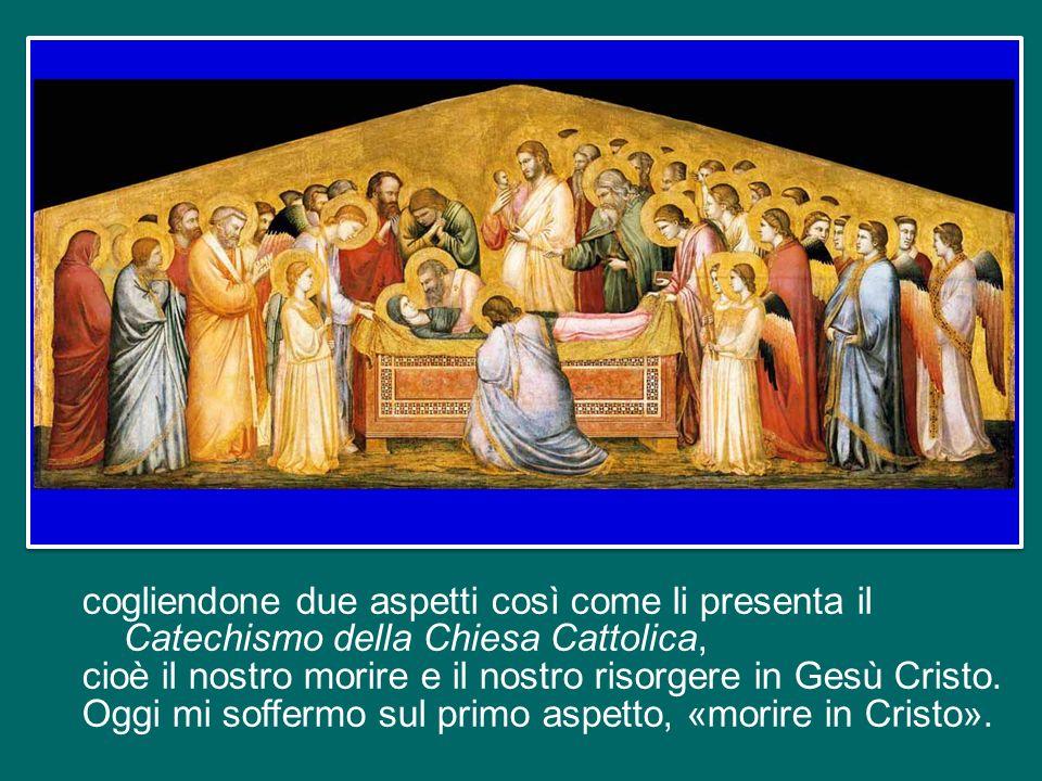 Desidero portare a termine le catechesi sul Credo , svolte durante lAnno della Fede, che si è concluso domenica scorsa.