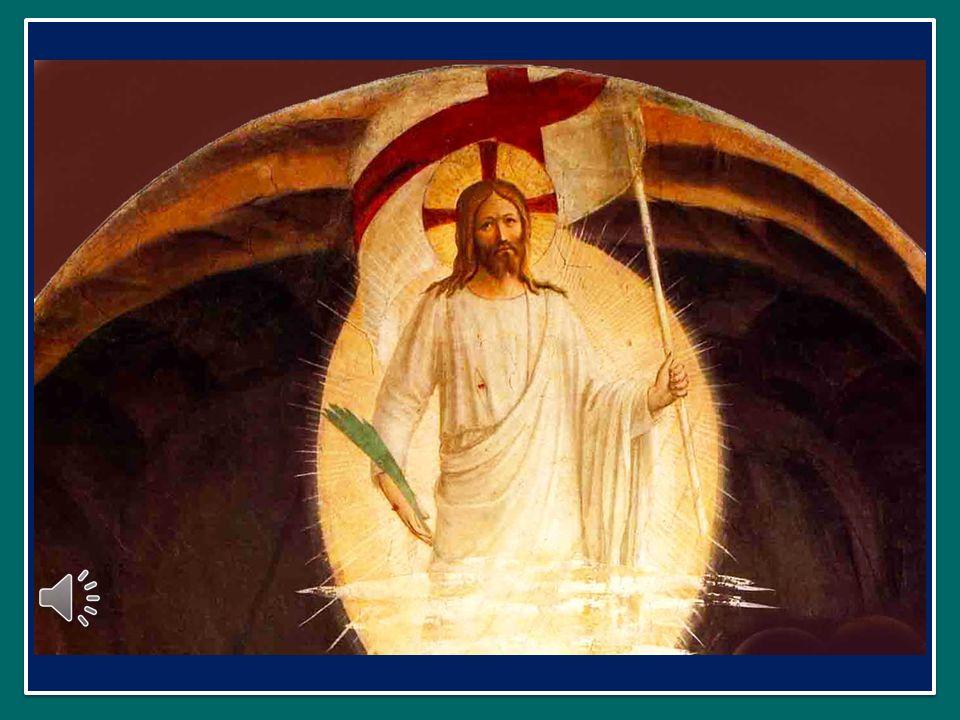 Se apriremo la porta della nostra vita e del nostro cuore ai fratelli più piccoli, allora anche la nostra morte diventerà una porta che ci introdurrà al cielo, alla patria beata, verso cui siamo diretti, anelando di dimorare per sempre con il nostro Padre, Dio, con Gesù, con la Madonna e con i santi.