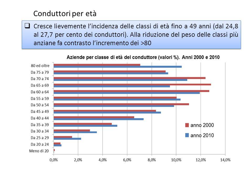 Cresce lievemente lincidenza delle classi di età fino a 49 anni (dal 24,8 al 27,7 per cento dei conduttori). Alla riduzione del peso delle classi più