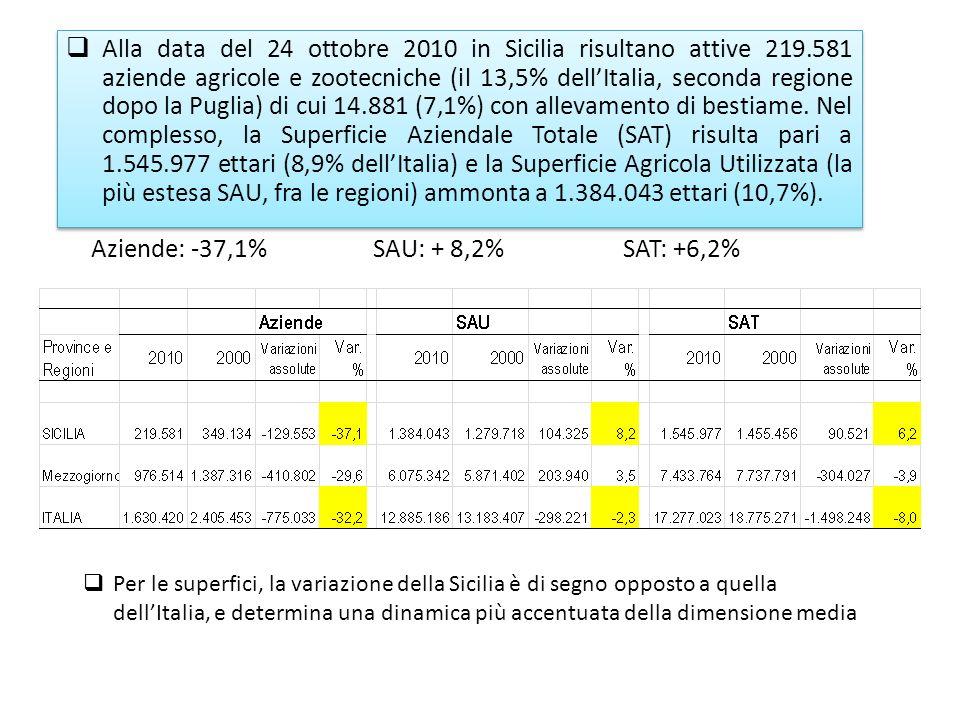Aziende: -37,1% SAU: + 8,2% SAT: +6,2% Alla data del 24 ottobre 2010 in Sicilia risultano attive 219.581 aziende agricole e zootecniche (il 13,5% dellItalia, seconda regione dopo la Puglia) di cui 14.881 (7,1%) con allevamento di bestiame.
