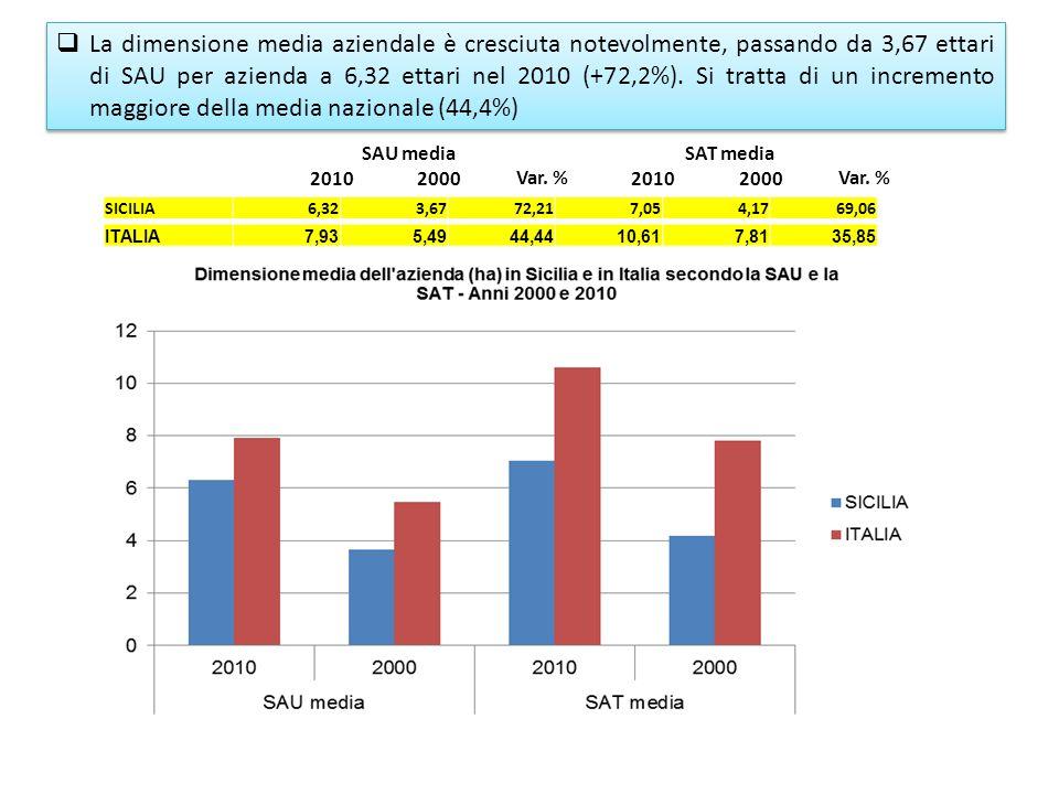SAU mediaSAT media 20102000 Var. % 20102000 Var. % SICILIA6,323,6772,217,054,1769,06 ITALIA7,935,4944,4410,617,8135,85 La dimensione media aziendale è