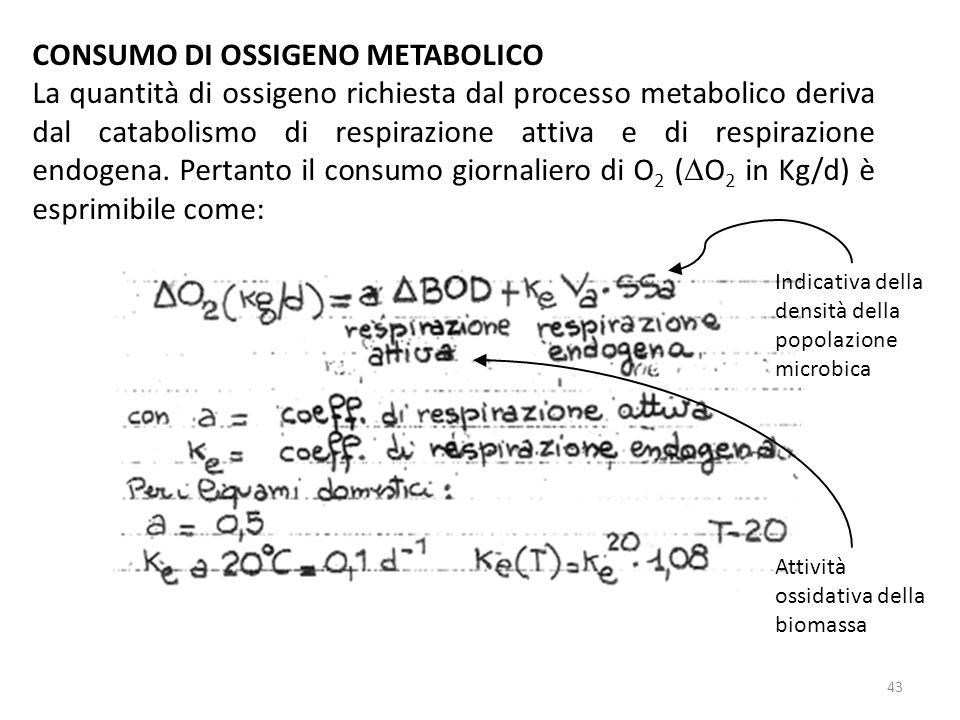 CONSUMO DI OSSIGENO METABOLICO La quantità di ossigeno richiesta dal processo metabolico deriva dal catabolismo di respirazione attiva e di respirazio
