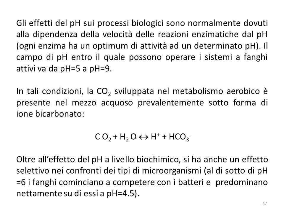 Gli effetti del pH sui processi biologici sono normalmente dovuti alla dipendenza della velocità delle reazioni enzimatiche dal pH (ogni enzima ha un