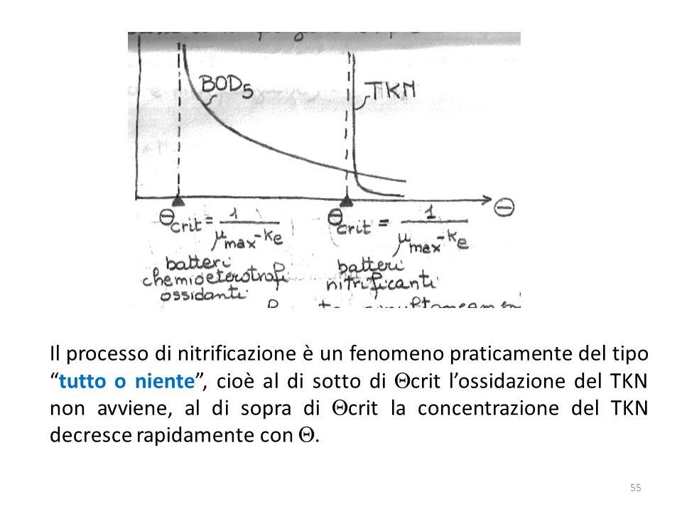 Il processo di nitrificazione è un fenomeno praticamente del tipotutto o niente, cioè al di sotto di crit lossidazione del TKN non avviene, al di sopr