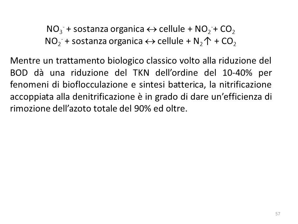 NO 3 - + sostanza organica cellule + NO 2 - + CO 2 NO 2 - + sostanza organica cellule + N 2 + CO 2 Mentre un trattamento biologico classico volto alla