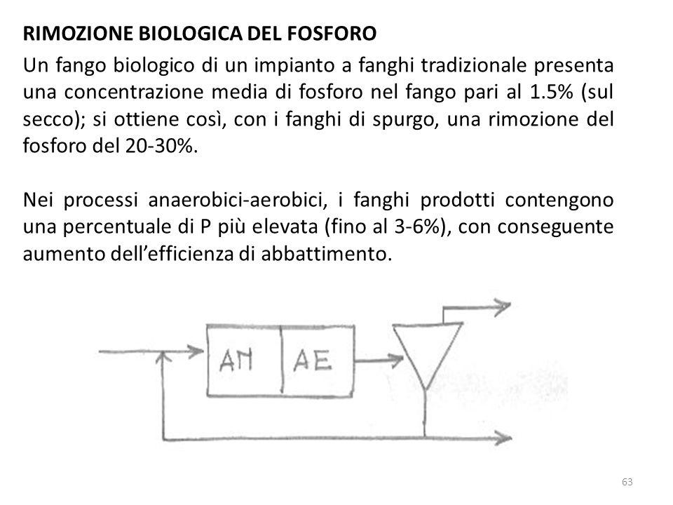 RIMOZIONE BIOLOGICA DEL FOSFORO Un fango biologico di un impianto a fanghi tradizionale presenta una concentrazione media di fosforo nel fango pari al