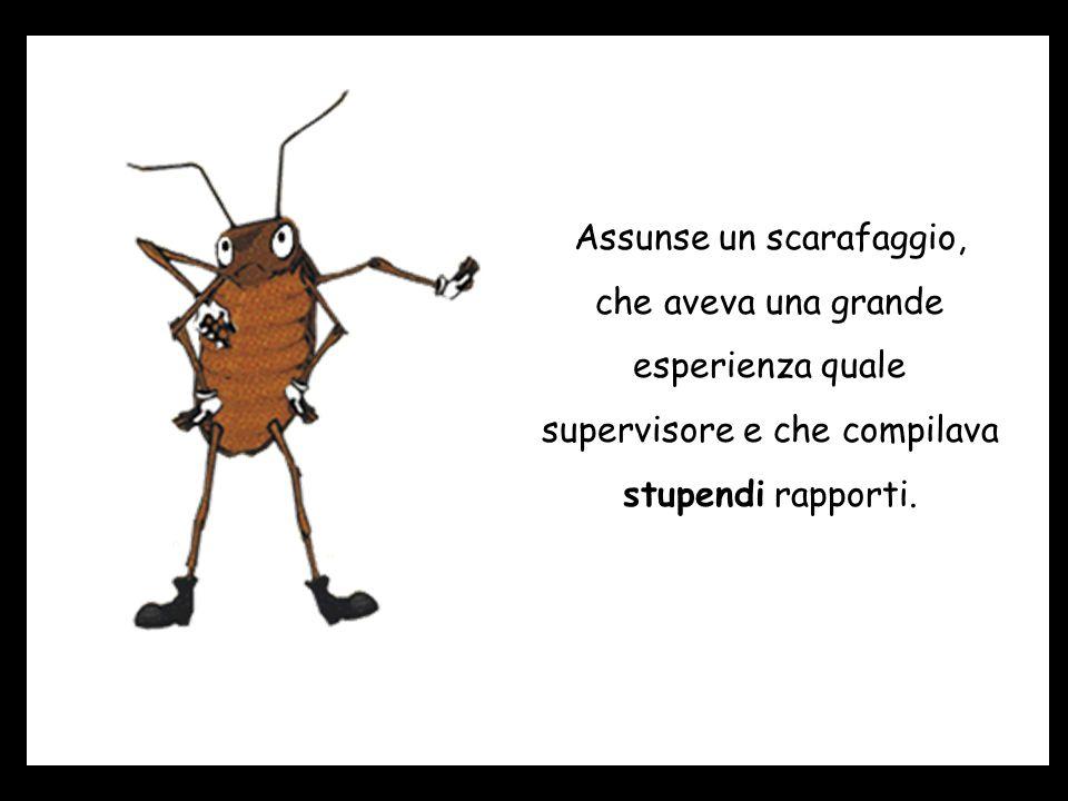 Assunse un scarafaggio, che aveva una grande esperienza quale supervisore e che compilava stupendi rapporti.
