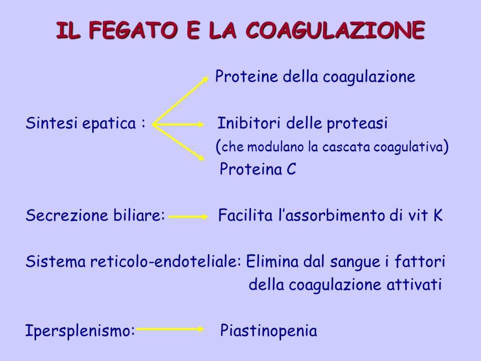 IL FEGATO E LA COAGULAZIONE Proteine della coagulazione Sintesi epatica : Inibitori delle proteasi ( che modulano la cascata coagulativa ) Proteina C