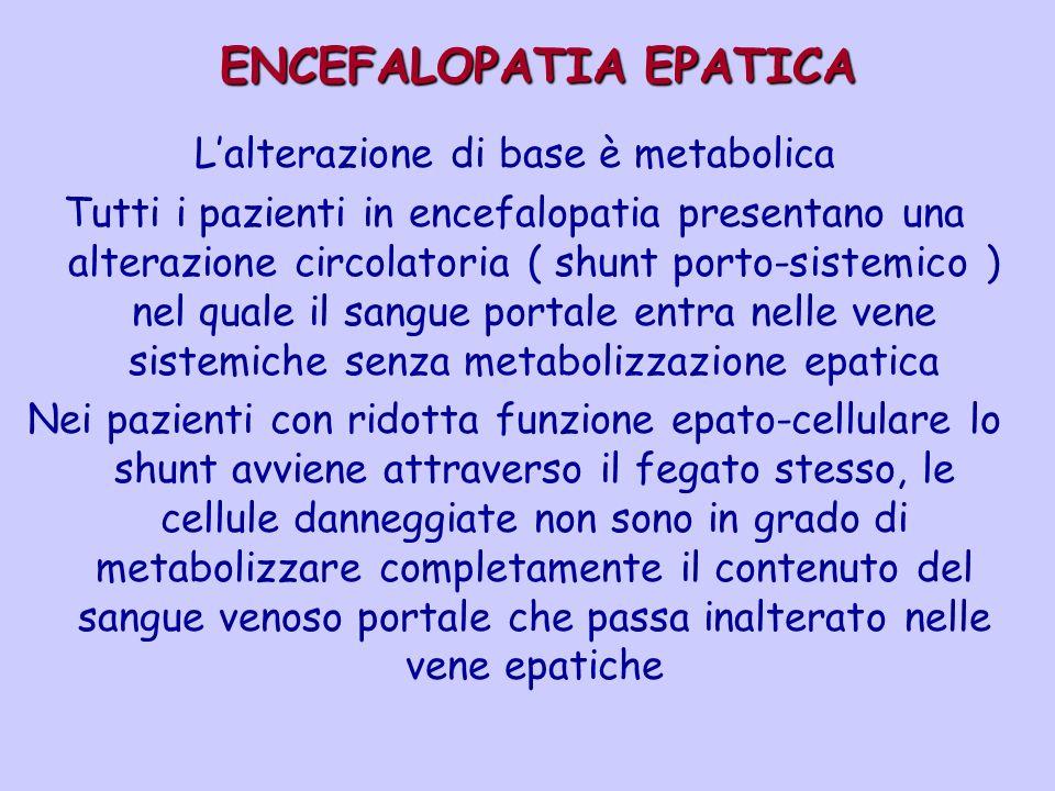 ENCEFALOPATIA EPATICA ENCEFALOPATIA EPATICA Lalterazione di base è metabolica Tutti i pazienti in encefalopatia presentano una alterazione circolatori