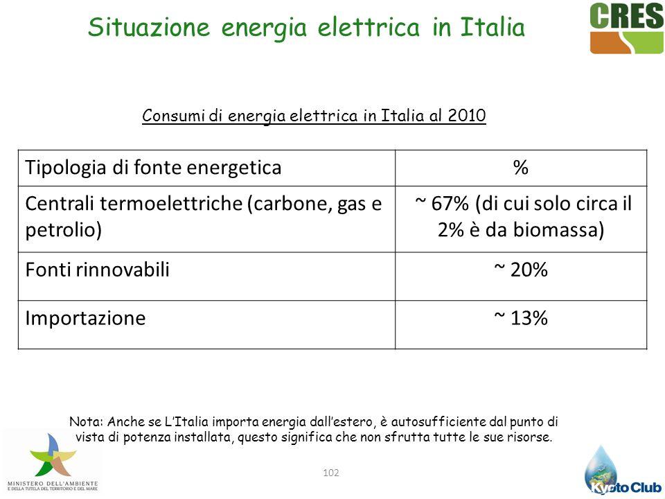 Situazione energia elettrica in Italia 102 Consumi di energia elettrica in Italia al 2010 Tipologia di fonte energetica% Centrali termoelettriche (car