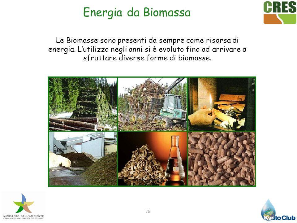 79 Energia da Biomassa Le Biomasse sono presenti da sempre come risorsa di energia. Lutilizzo negli anni si è evoluto fino ad arrivare a sfruttare div