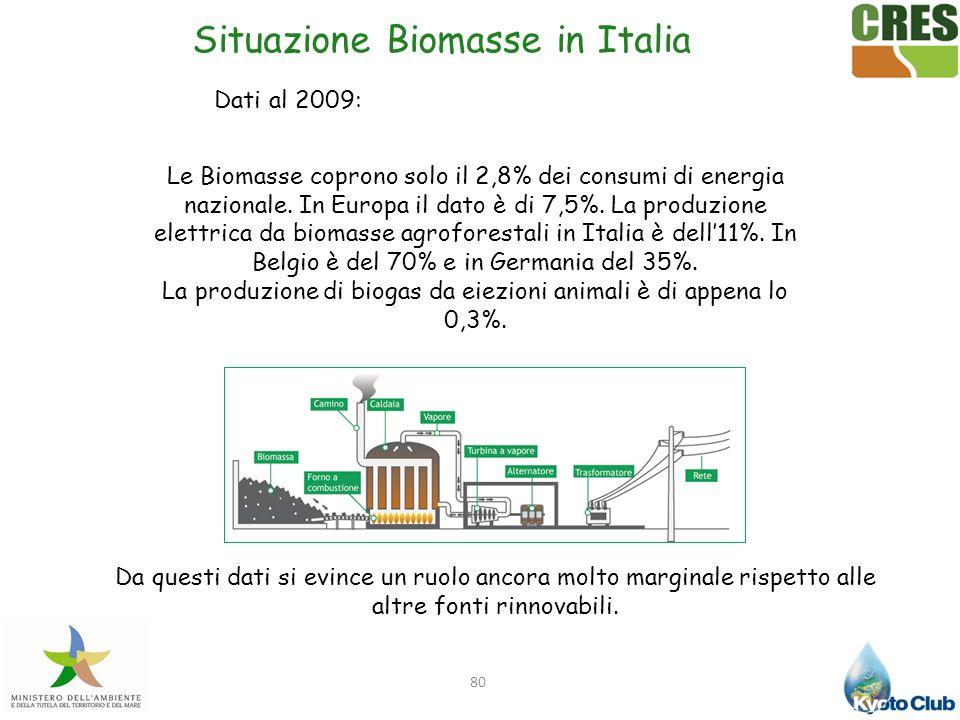 80 Le Biomasse coprono solo il 2,8% dei consumi di energia nazionale. In Europa il dato è di 7,5%. La produzione elettrica da biomasse agroforestali i