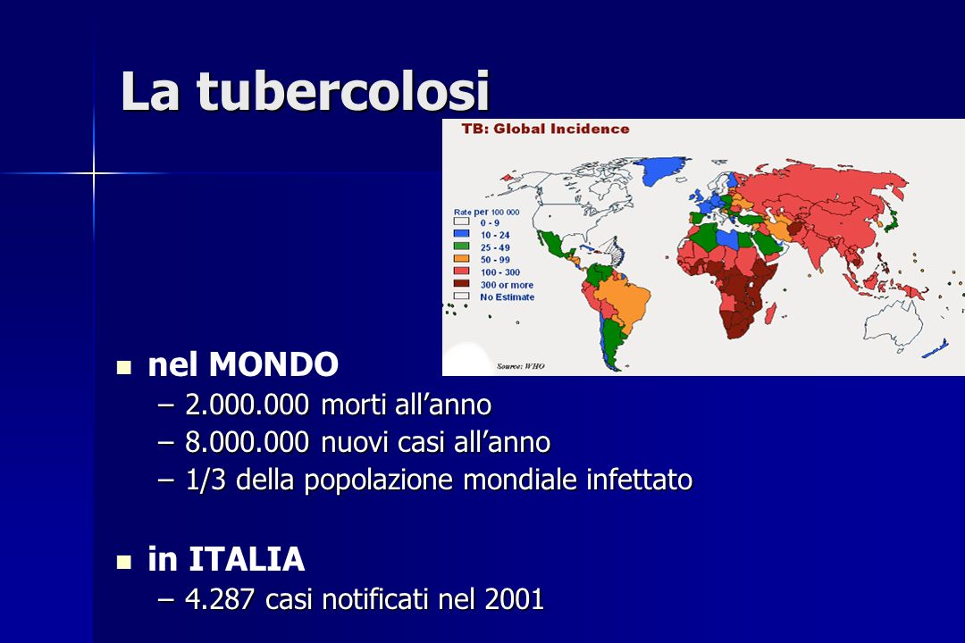 La tubercolosi nel MONDO –2.000.000 morti allanno –8.000.000 nuovi casi allanno –1/3 della popolazione mondiale infettato in ITALIA –4.287 casi notifi