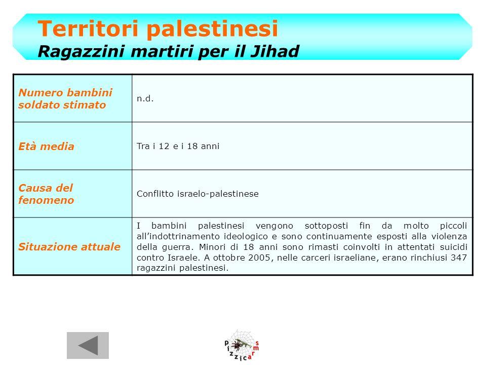 Territori palestinesi Ragazzini martiri per il Jihad Numero bambini soldato stimato n.d.
