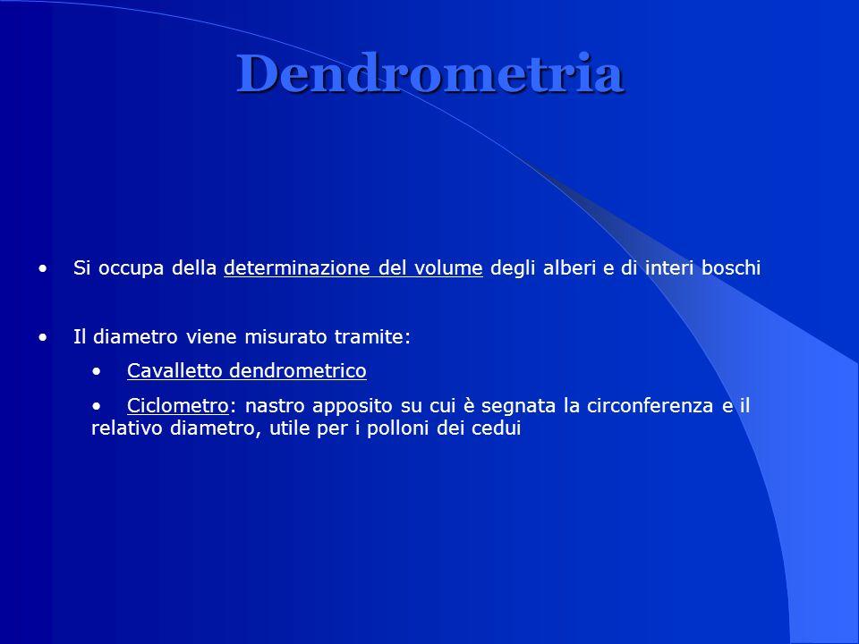 Dendrometria Si occupa della determinazione del volume degli alberi e di interi boschi Il diametro viene misurato tramite: Cavalletto dendrometrico Ci