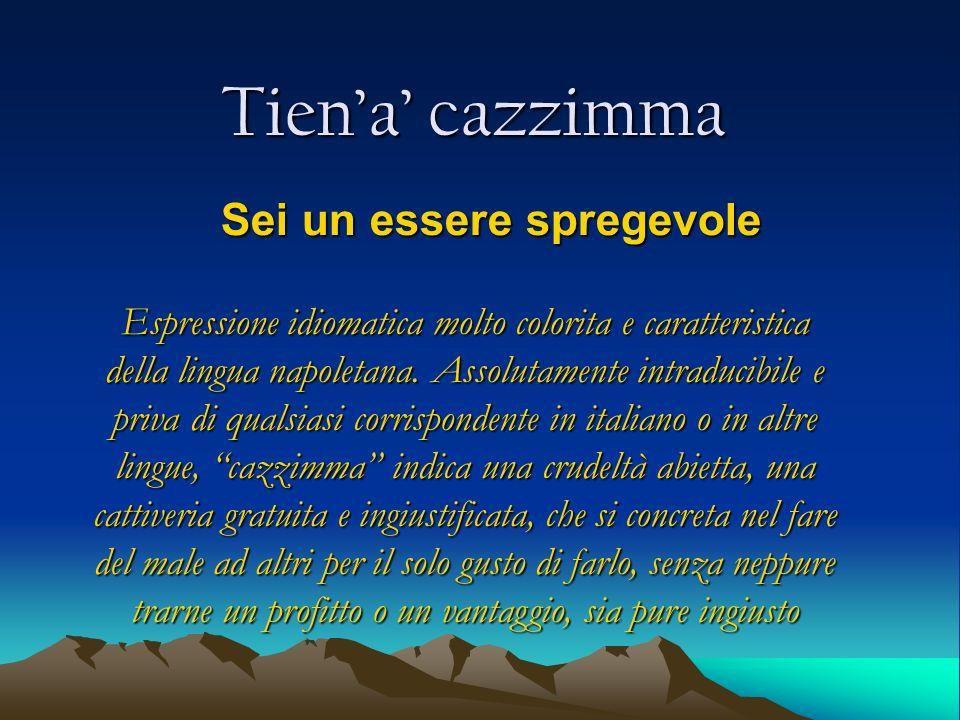 Tiena cazzimma Sei un essere spregevole Espressione idiomatica molto colorita e caratteristica della lingua napoletana. Assolutamente intraducibile e
