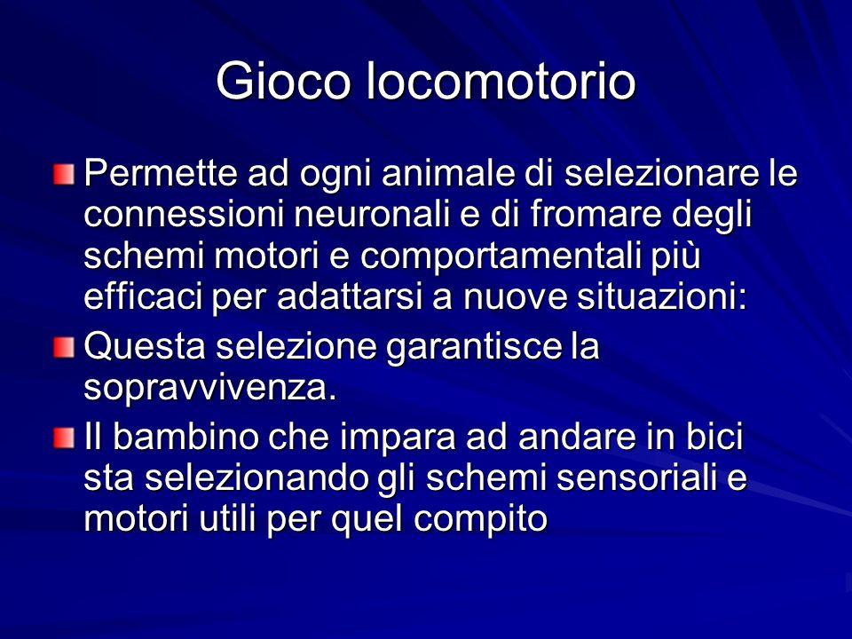 Gioco locomotorio Permette ad ogni animale di selezionare le connessioni neuronali e di fromare degli schemi motori e comportamentali più efficaci per
