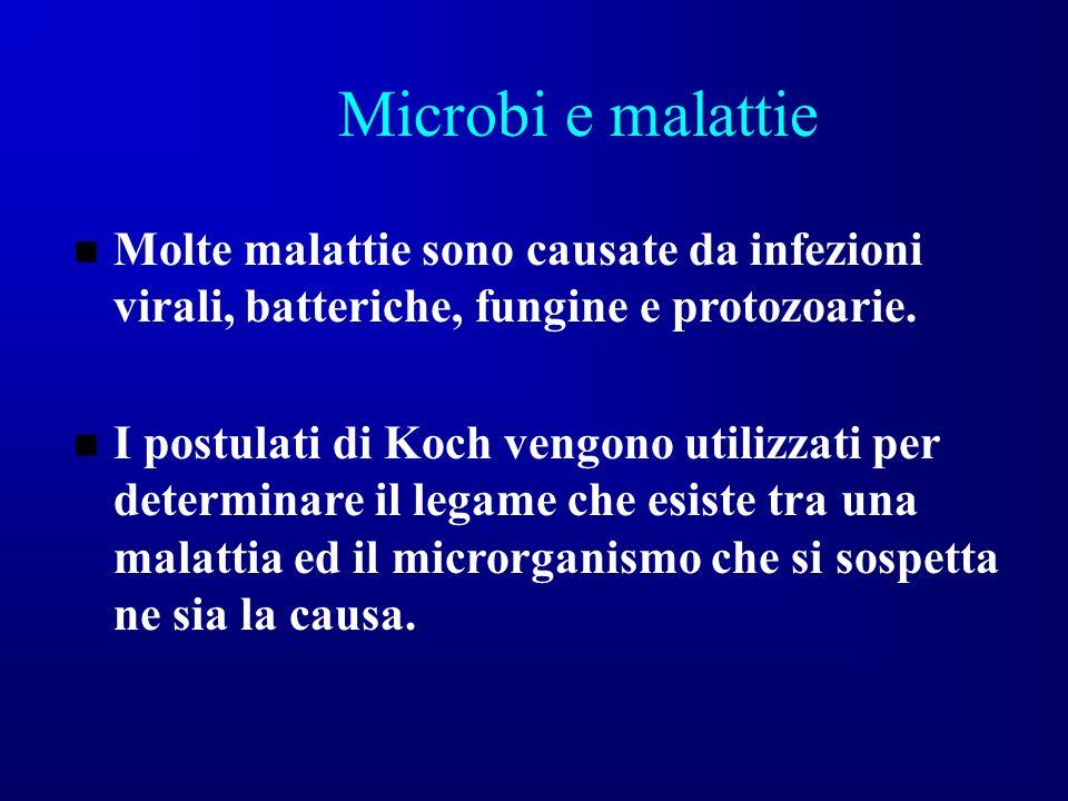Microbi e malattie Molte malattie sono causate da infezioni virali, batteriche, fungine e protozoarie. I postulati di Koch vengono utilizzati per dete