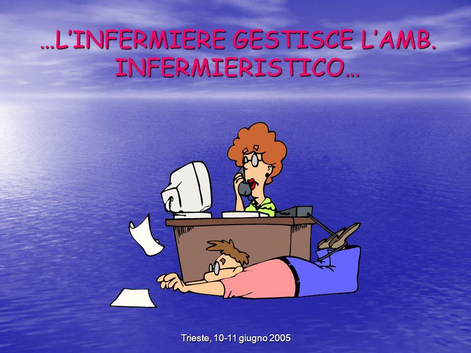 Trieste, 10-11 giugno 2005 …LINFERMIERE GESTISCE LAMB. INFERMIERISTICO…