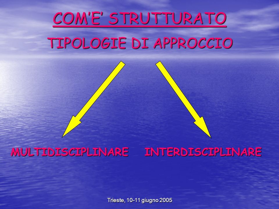 Trieste, 10-11 giugno 2005 COME STRUTTURATO TIPOLOGIE DI APPROCCIO MULTIDISCIPLINAREINTERDISCIPLINARE