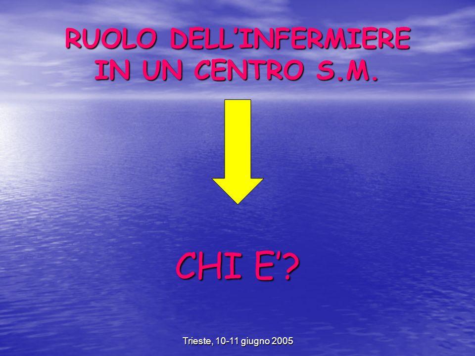 Trieste, 10-11 giugno 2005 RUOLO DELLINFERMIERE IN UN CENTRO S.M. CHI E
