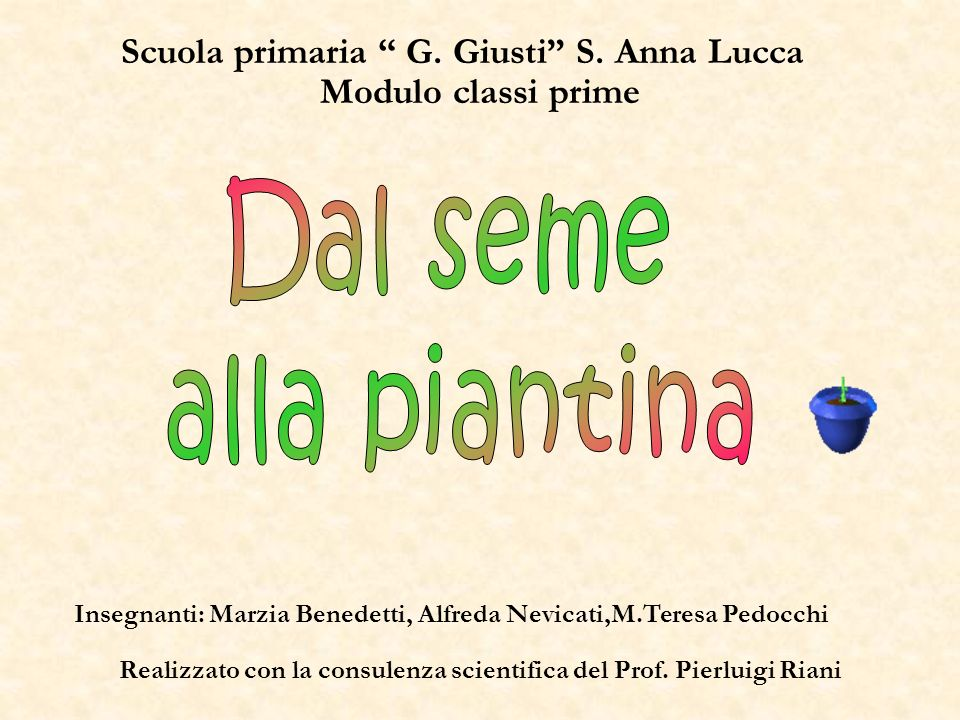 Scuola primaria G. Giusti S. Anna Lucca Insegnanti: Marzia Benedetti, Alfreda Nevicati,M.Teresa Pedocchi Modulo classi prime Realizzato con la consule