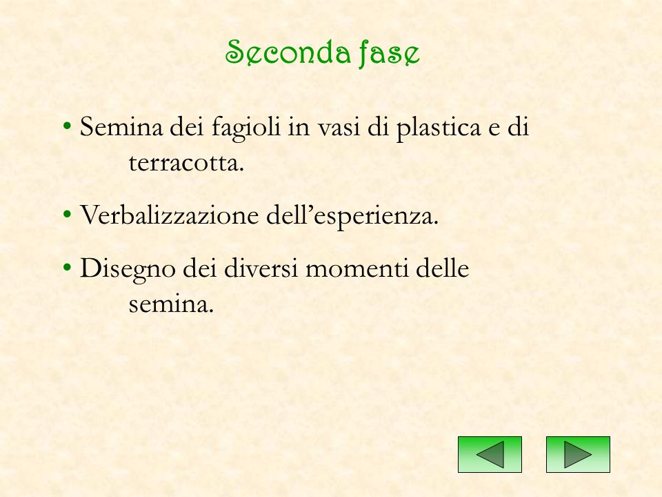 Seconda fase Semina dei fagioli in vasi di plastica e di terracotta. Verbalizzazione dellesperienza. Disegno dei diversi momenti delle semina.