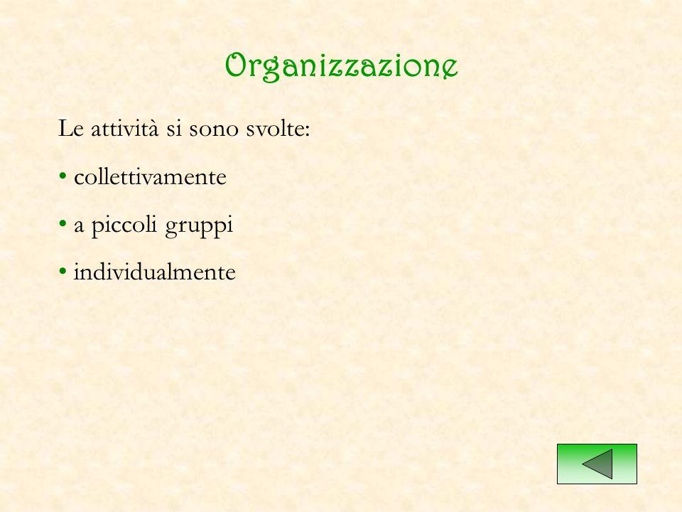 Organizzazione Le attività si sono svolte: collettivamente a piccoli gruppi individualmente