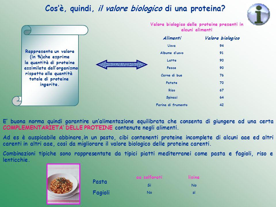 Cosè, quindi, il valore biologico di una proteina? Rappresenta un valore (in %)che esprime la quantità di proteine assimilata dallorganismo rispetto a