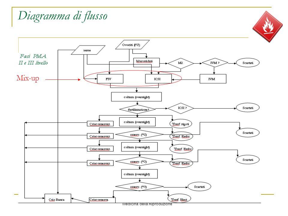 Ospedale Evangelico Internazionale Medicina della Riproduzione Diagramma di flusso Mix-up