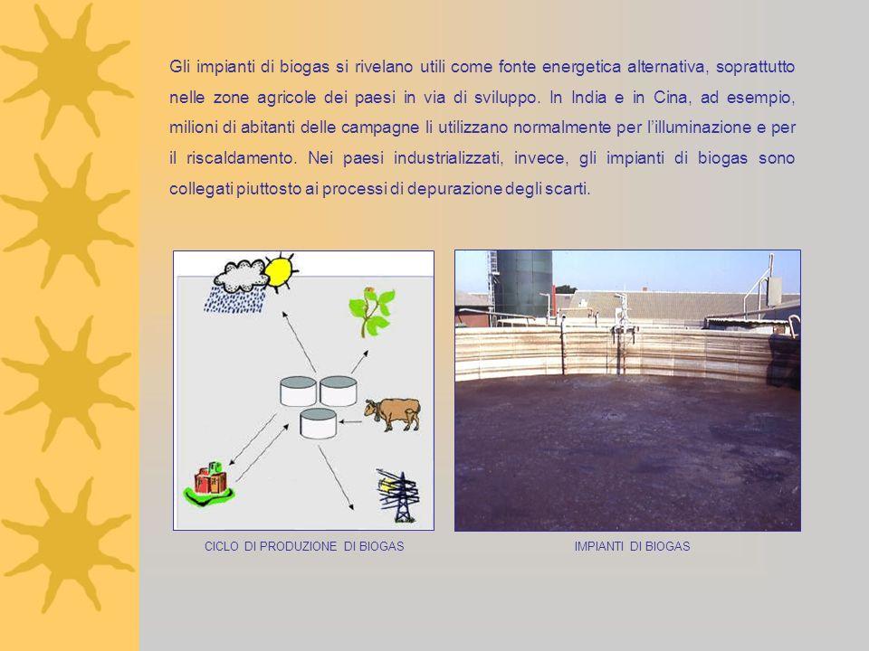 Gli impianti di biogas si rivelano utili come fonte energetica alternativa, soprattutto nelle zone agricole dei paesi in via di sviluppo. In India e i