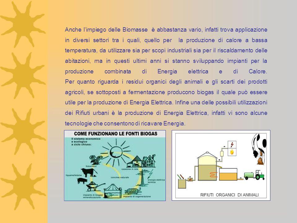 Anno Scolastico 2006 - 2007 I DOCENTI Prof.